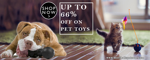 Up To 66% OFF On Pet Toys: Get Them All