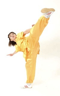 Wushu(Kung Fu) / Tai Chi classes in Mangalore